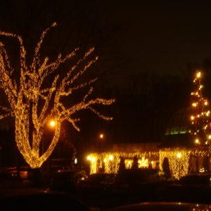 Ресторан Лесной. Новогоднее украшение